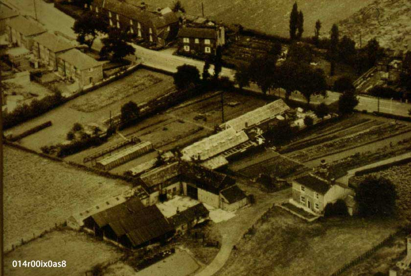 Aerial View, Pindergreen, 1960s.